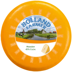 Gouda-Maasdam